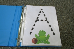 Frogs ABC Book Letter A