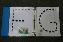 Frogs ABC Book Letter F,G