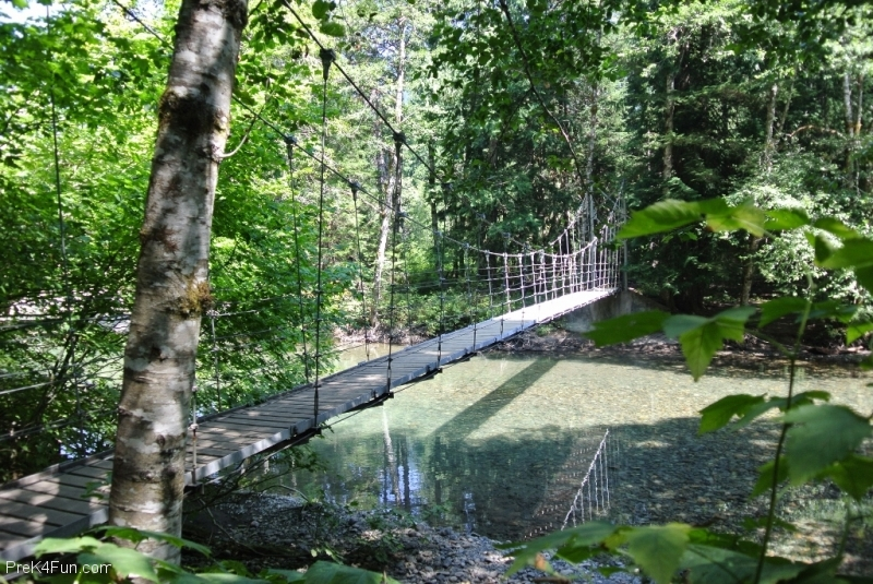 Grove of the patriarchs, Mt.Rainier suspension bridge start