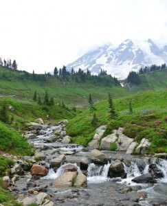 Mt.Rainer National Park