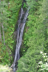 This waterfall is located off US Highway 101 at Falls View Campground (US Forest Service), a distance of four miles south of Quilcene or nine miles north of Brinnon
