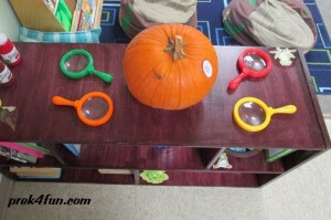 We spent a day studding how a Pumpkin looks, feels and smells.