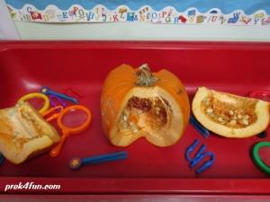 What's Inside a Pumpkin Seeds and Pulp sensory.