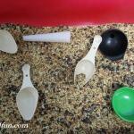 I Spy Bird Seed Sensory Table 2