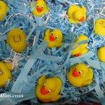 Quack welcome back sensory ducks