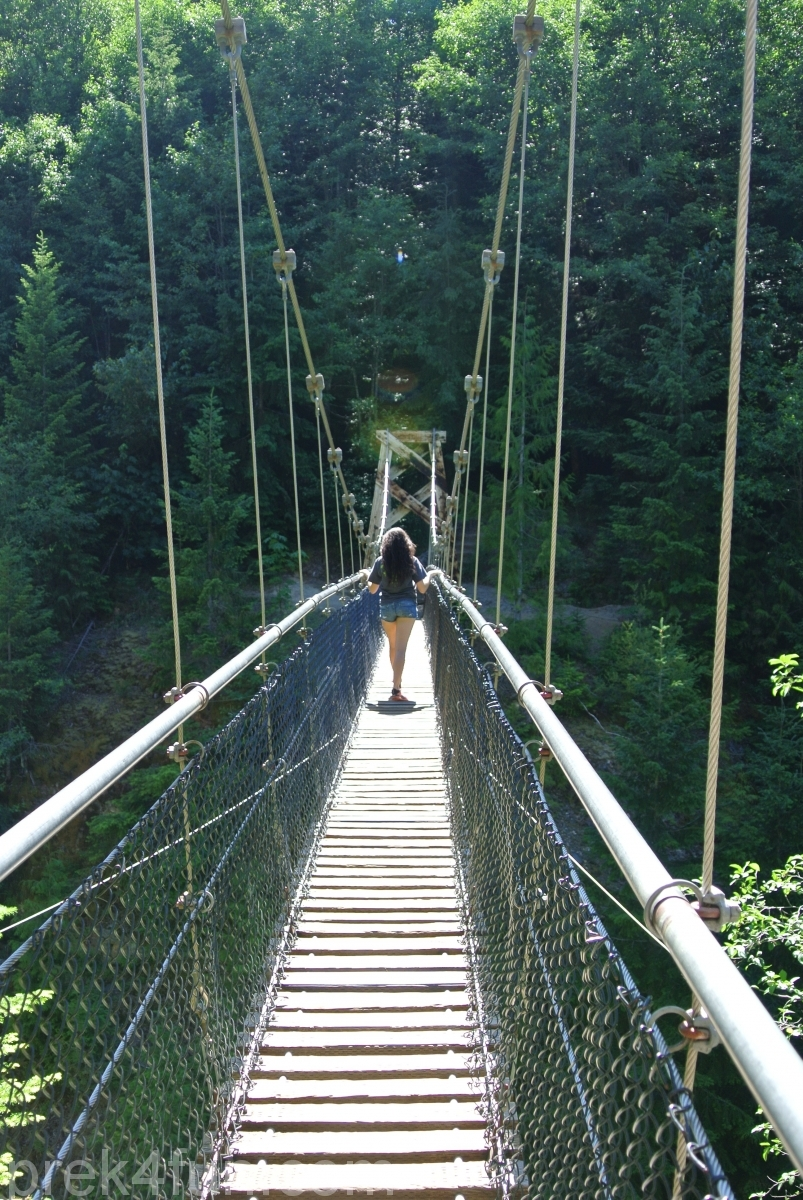Lava Canyon Loop suspension bridge cross