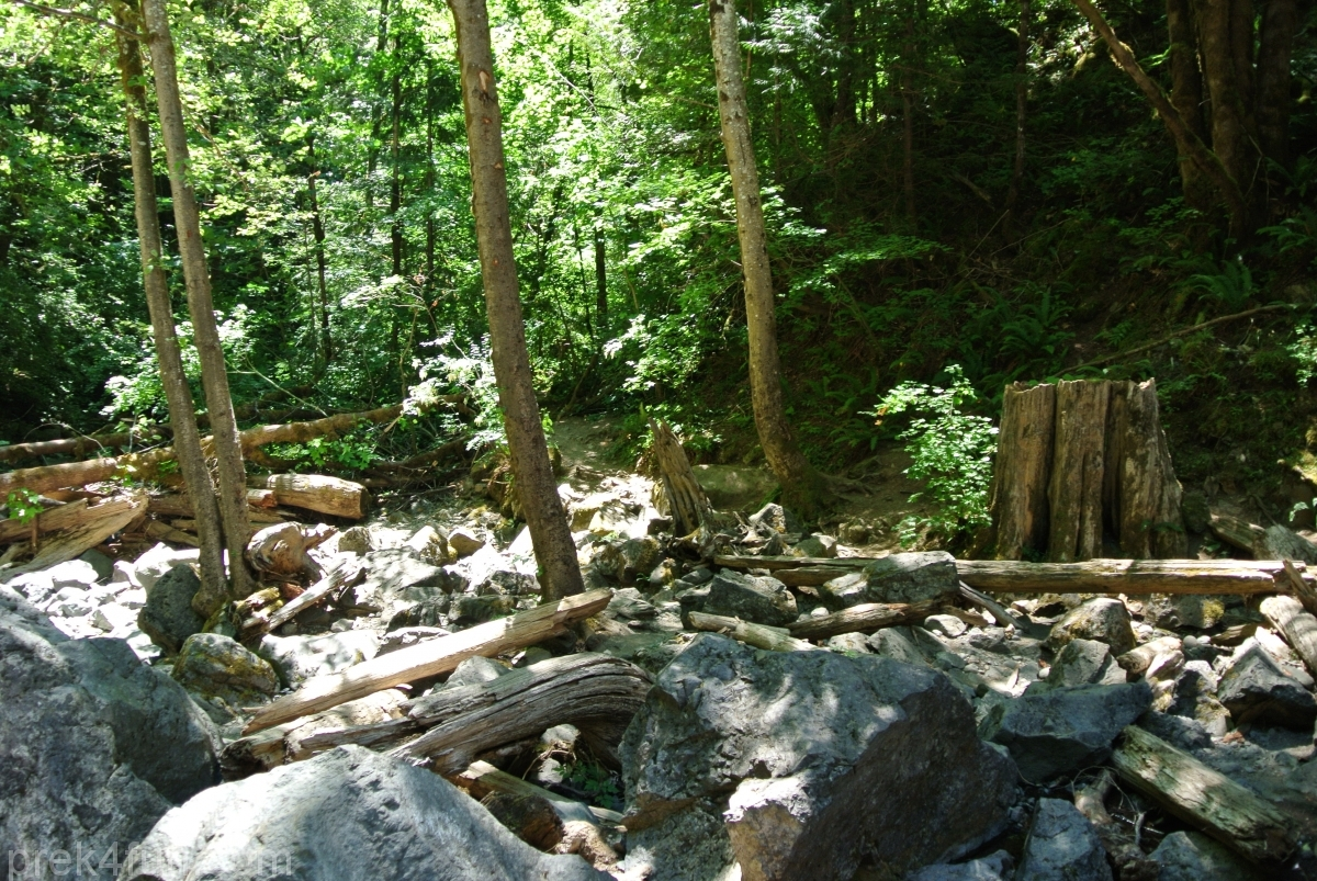 rocky brook falls trail