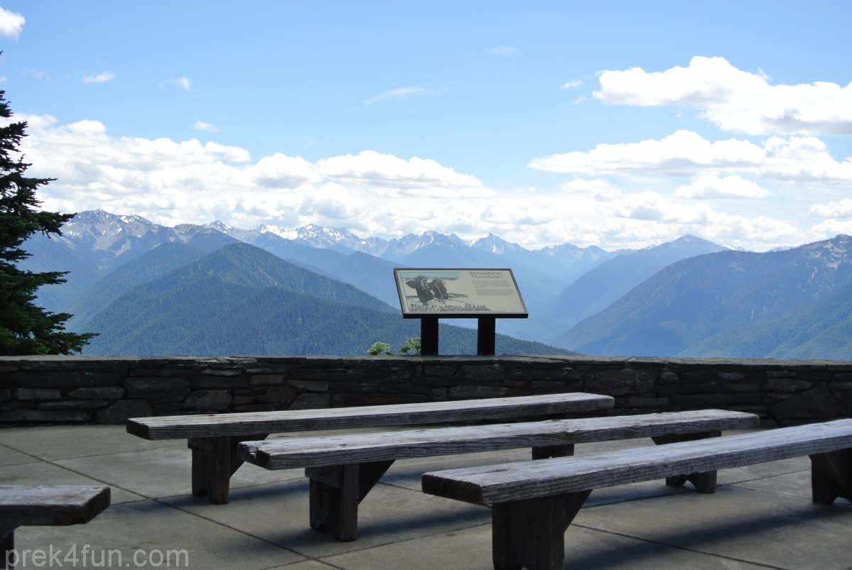 hurricane ridge vista view sitting area