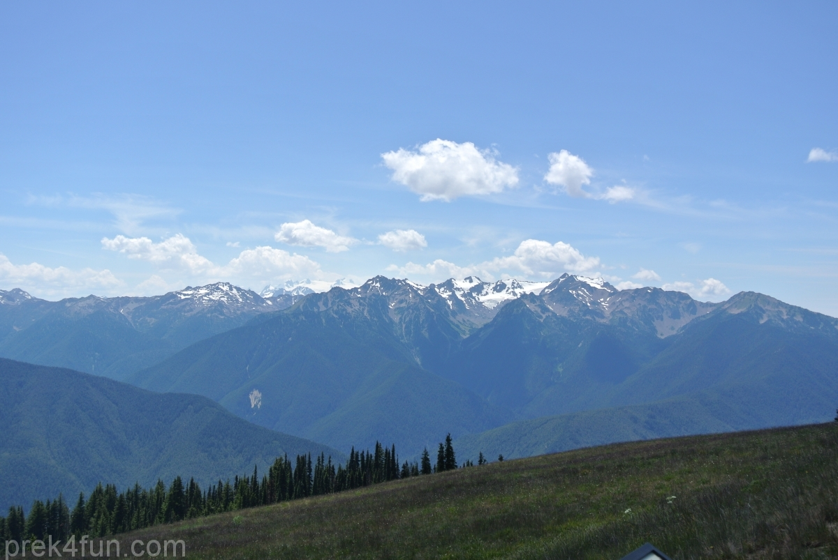 hurricane ridge vista view parking lot