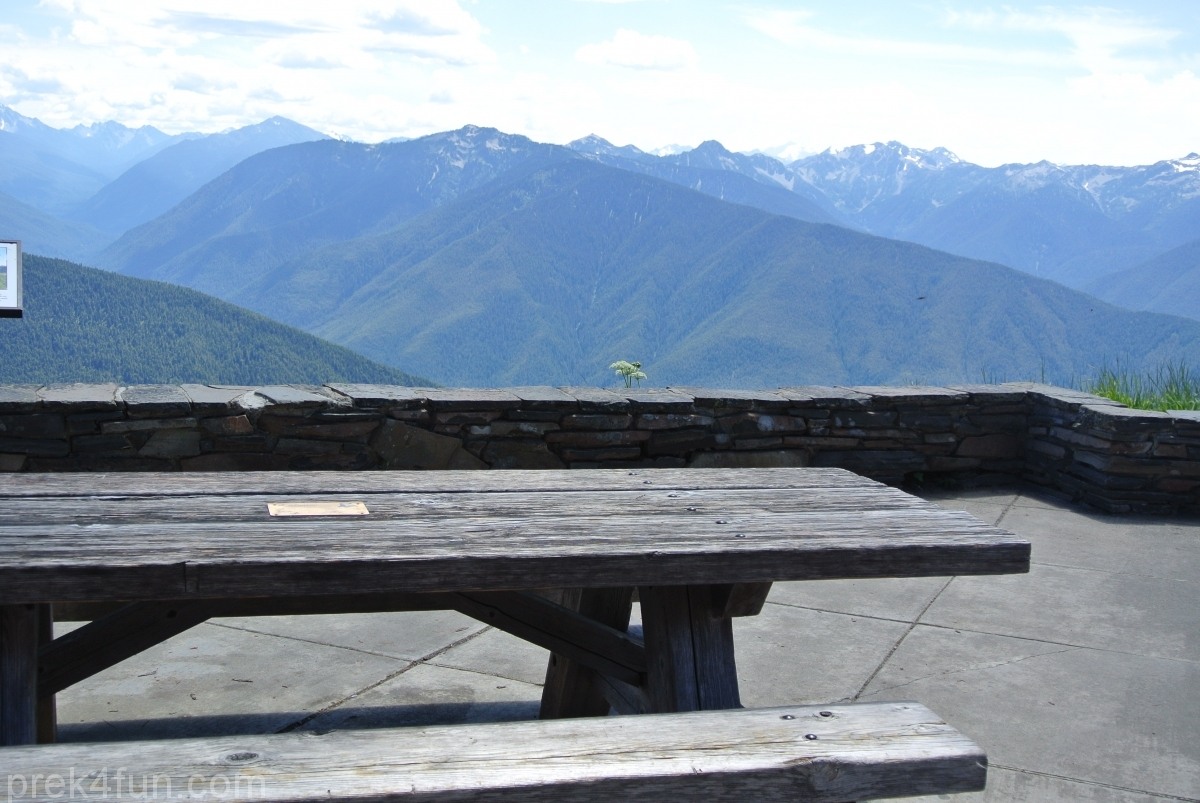 hurricane ridge visitor center vista view picnic area