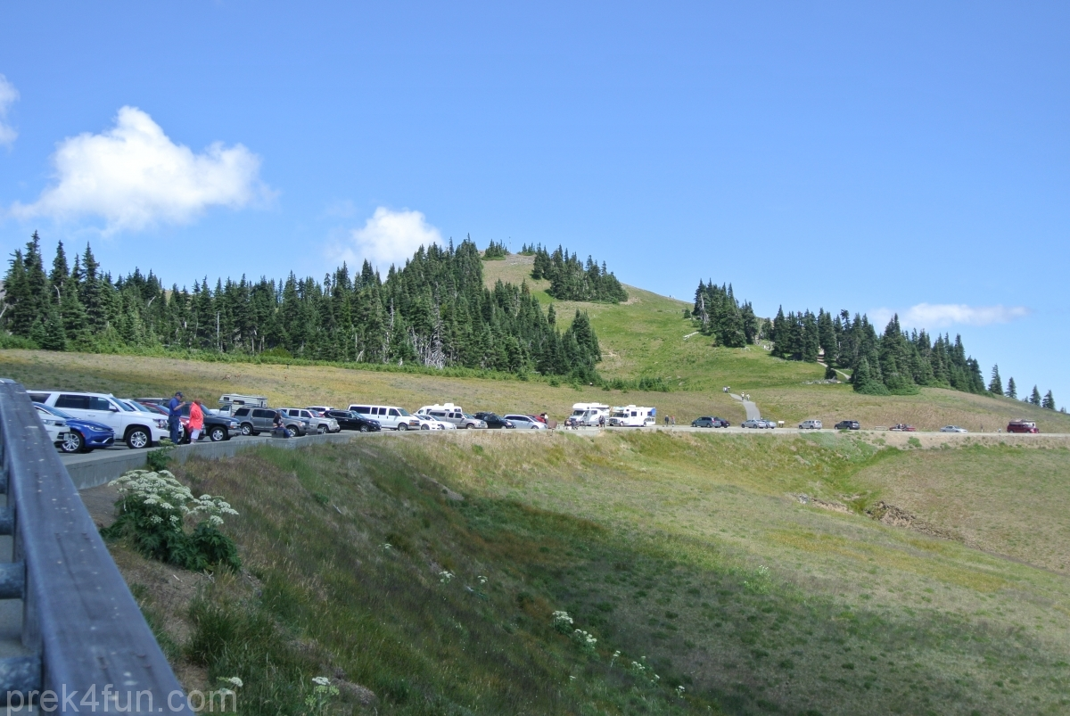 hurricane ridge parking visitor center