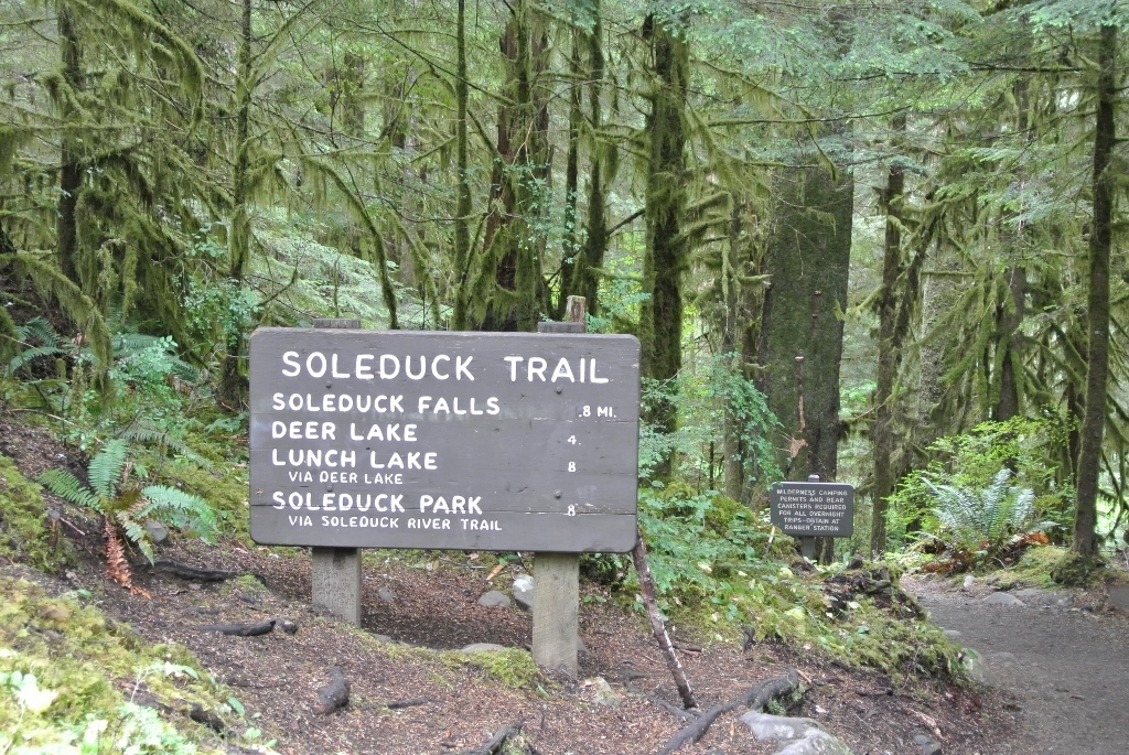 Sol Duc Falls trail head