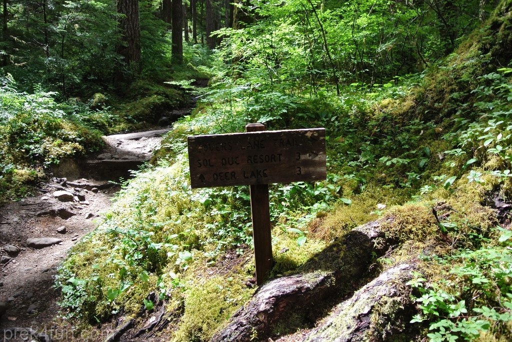 Sol Duc Falls trail sign