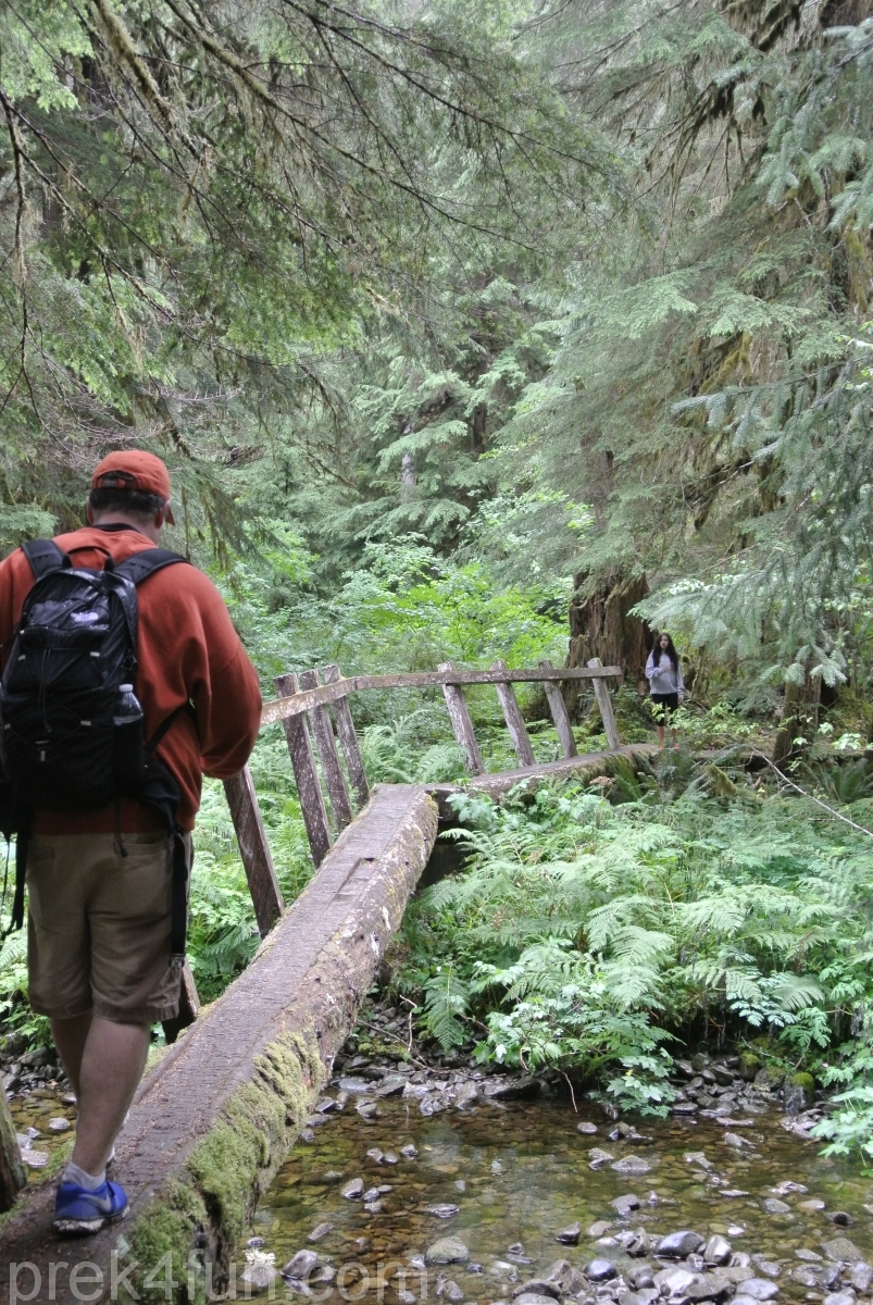 Sol Duc Falls trail bridge